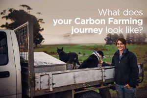 What does your Carbon Farming journey look like?